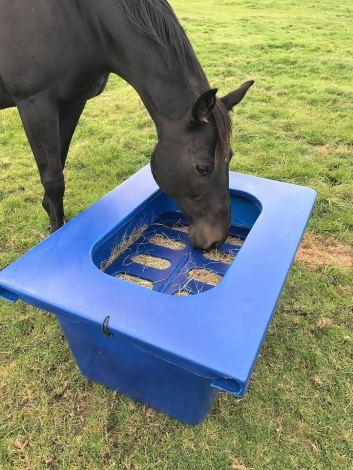 Hay-Saver-Dark-Ble-Horse-2