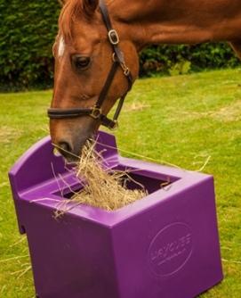 Haycube-horse-eating